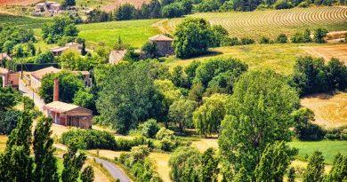 La Provence : votre sud de la France !